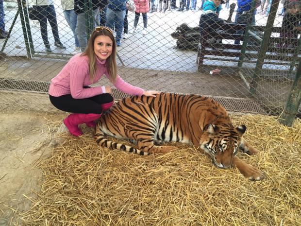 tigre zoo lujan carmen moretti derecho a la moda derecho de la moda perú
